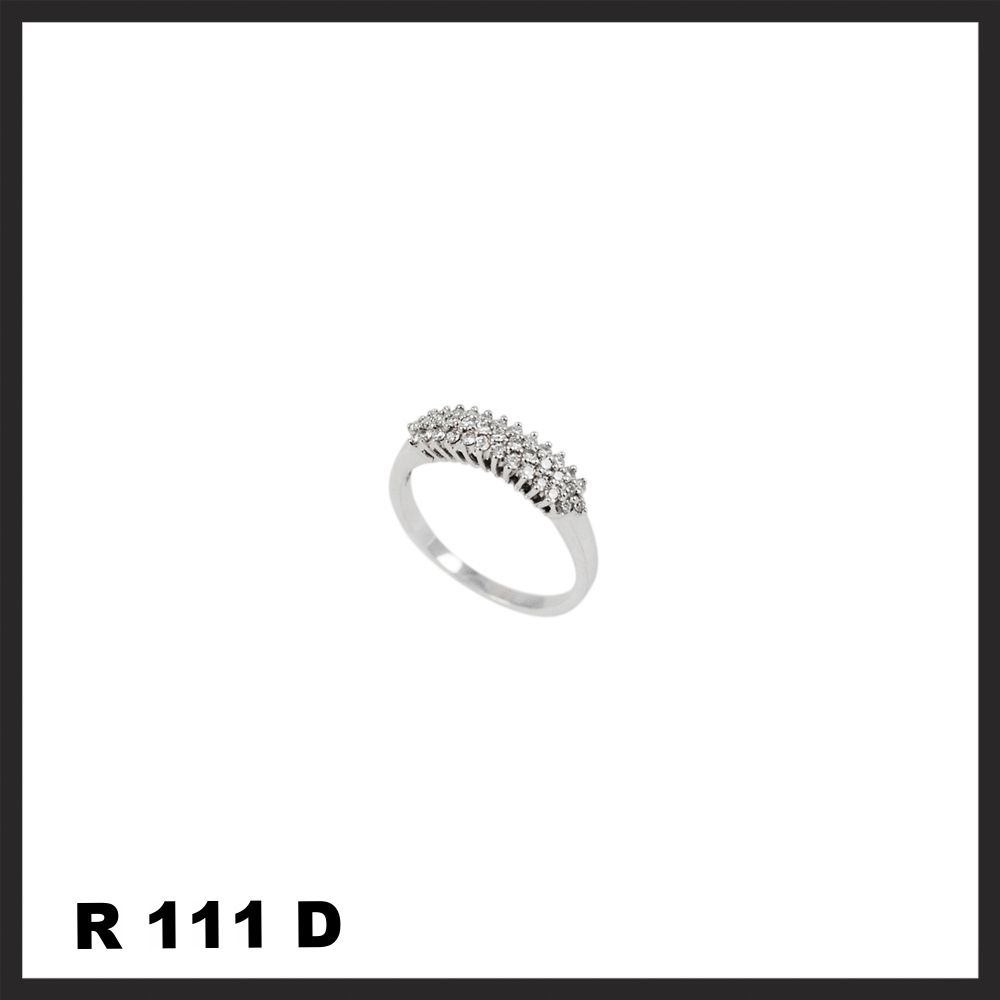 R111D.jpg