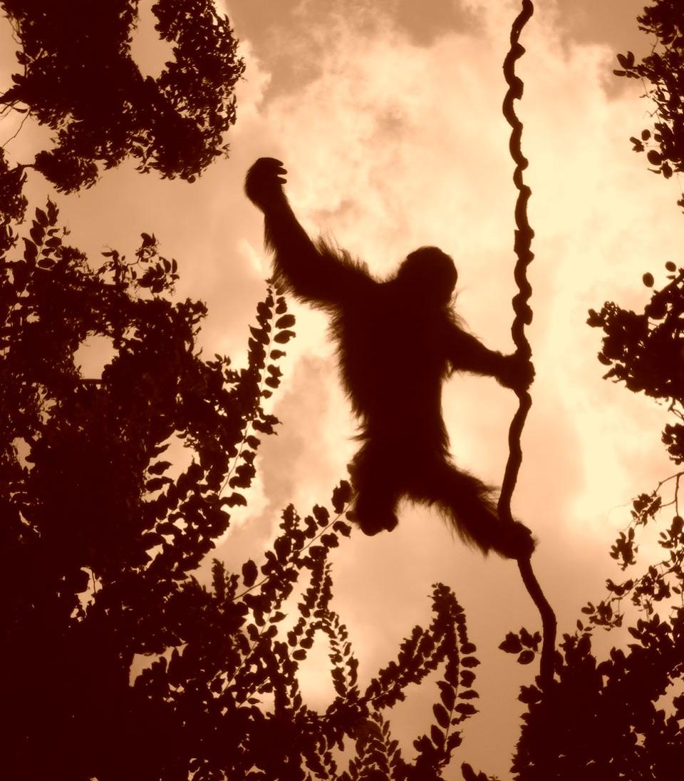 Stop hanging around.