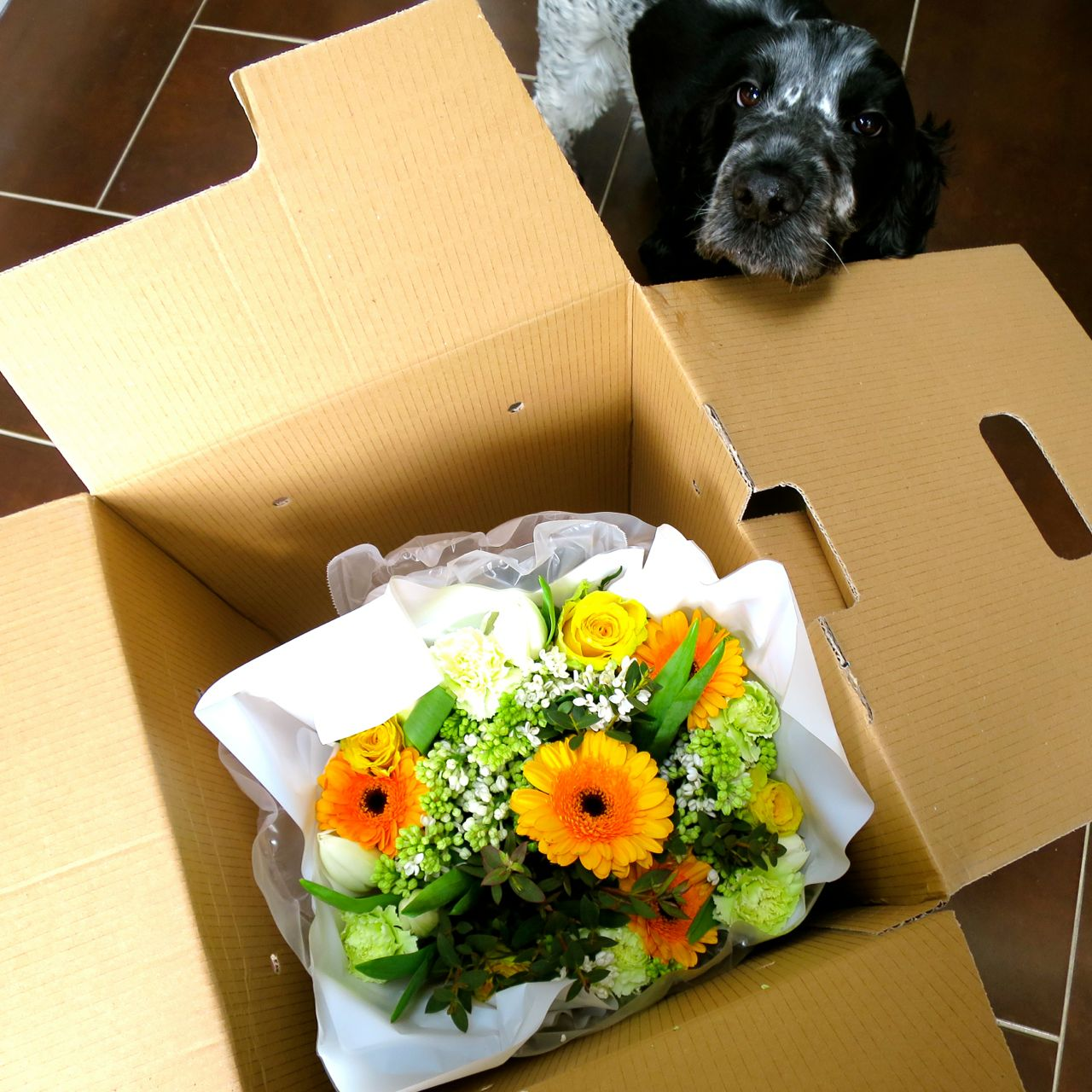 Appleyard Flower Delivery