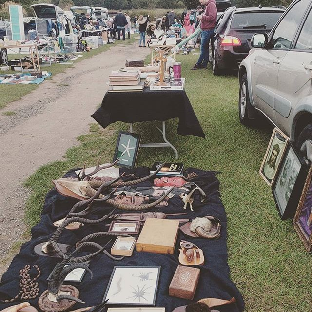 And here we go again! Come see us at the Weatherby Car Boot!