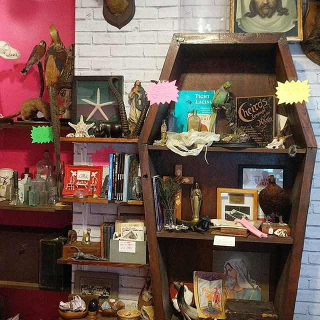 *LAST TWO DAYS* Most things on sale,  shop counter for sale as well as one display cabinet.