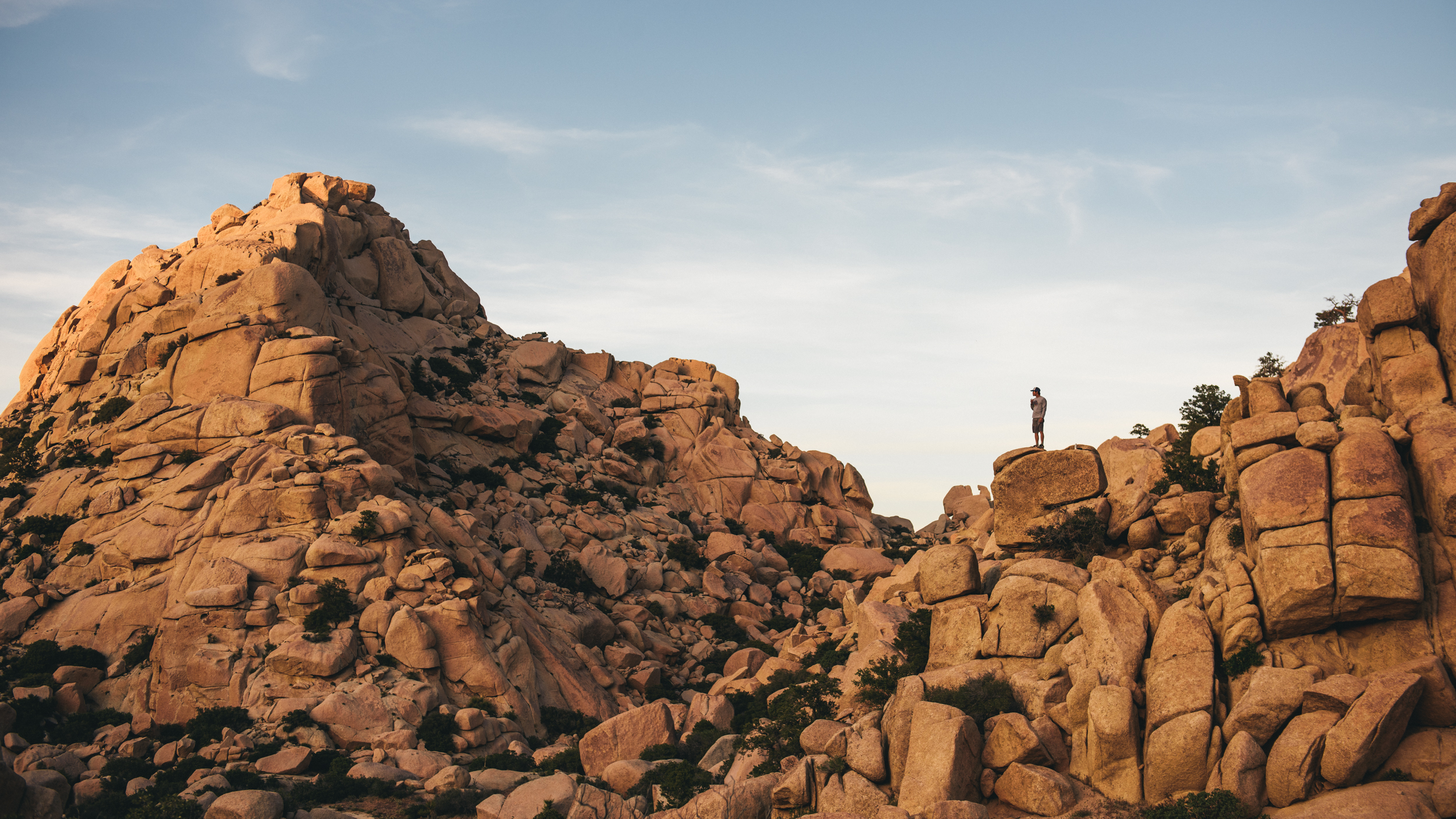 Desert-303.jpg