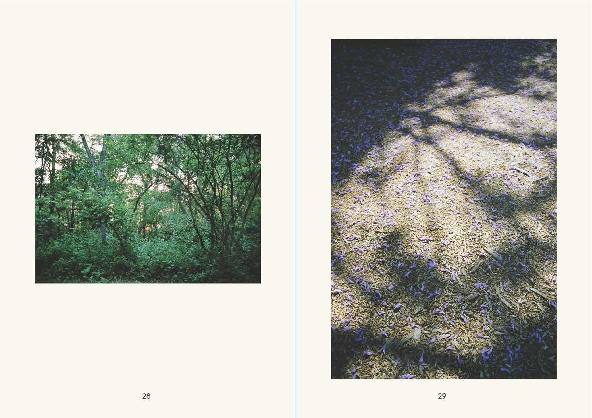 ikoiko_no7_Page_15.jpg