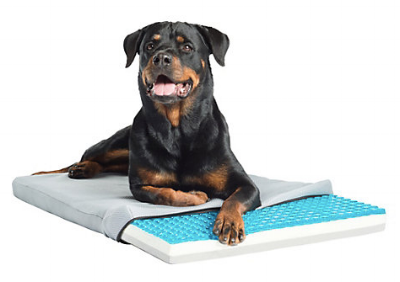 Wags and Walks_Summer Products_TheraCool Bed