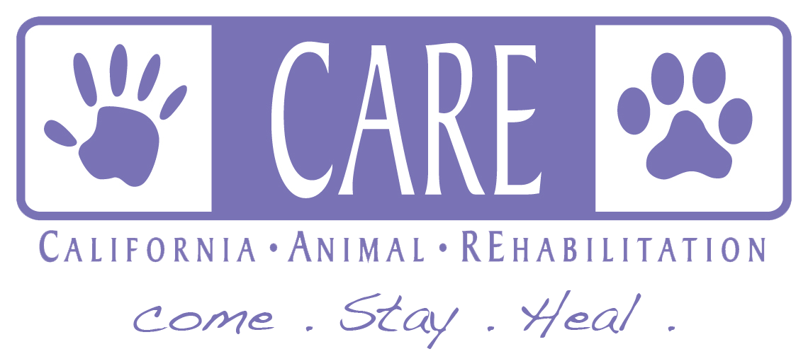 CARE-logo.png