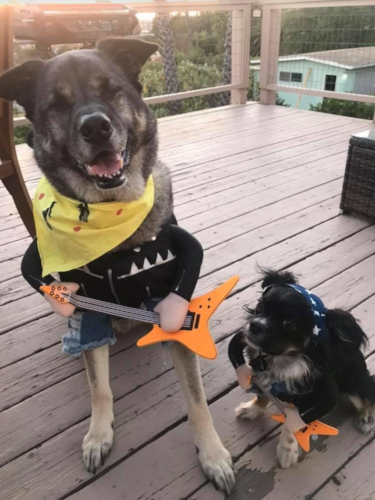 Rolling Stones, who? This dynamic duo is the only live concert we want to see!