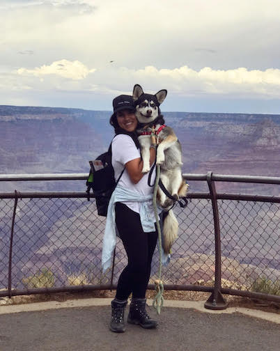 Wags & Walks_Love Your Pet Day_Ziba