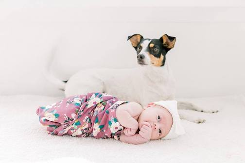 Wags & Walks_Love Your Pet Day_George