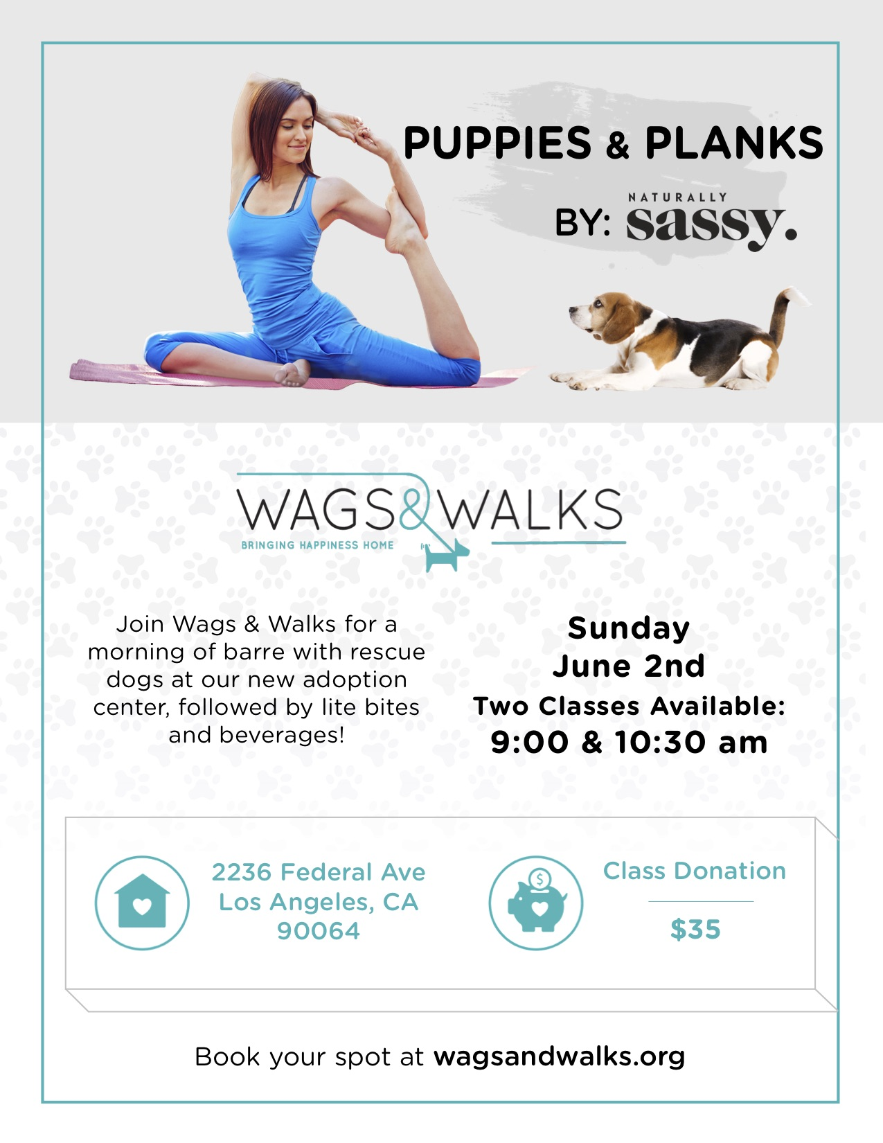 Puppies & Planks .jpg