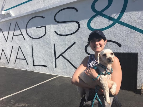 Wags and Walks_Animal Rescue