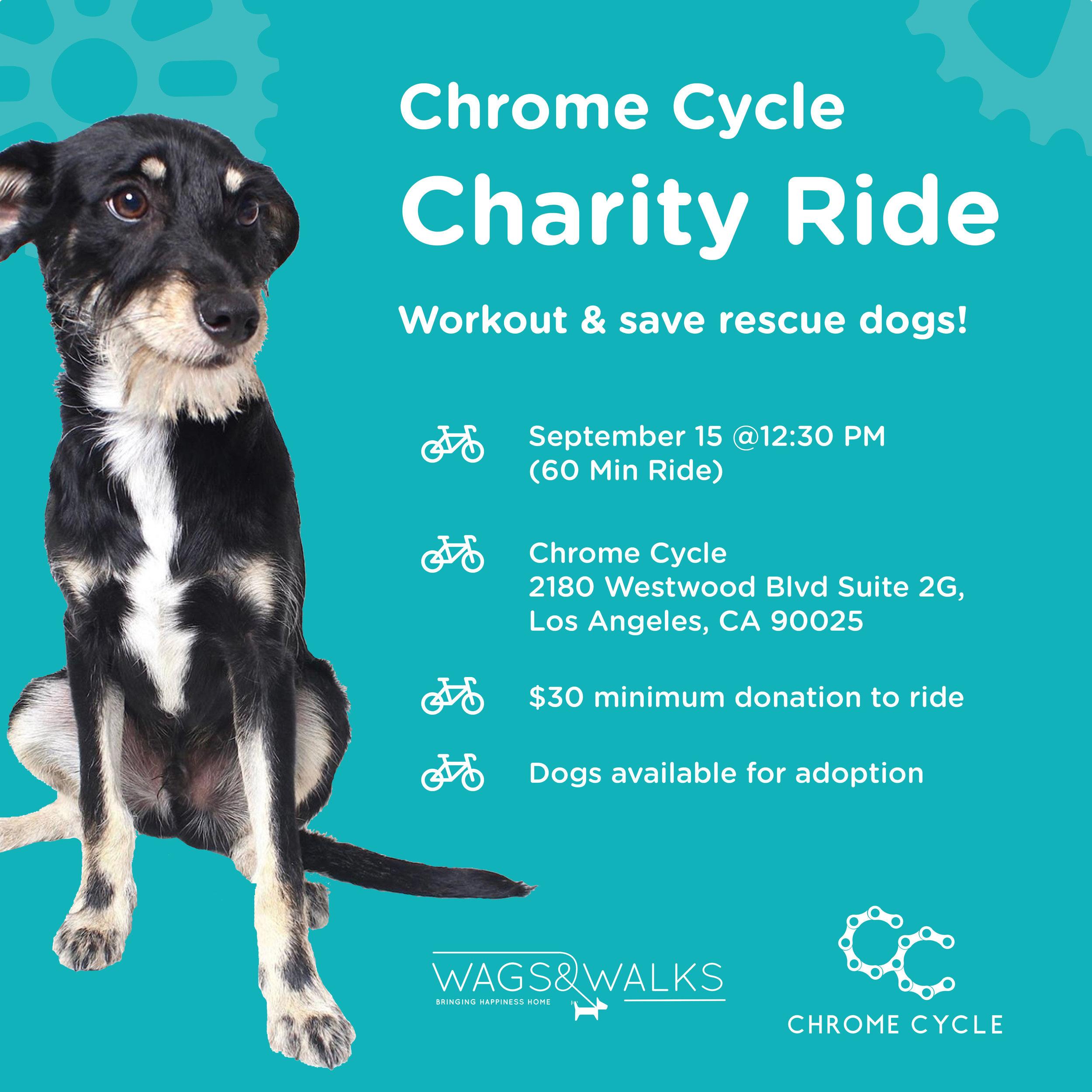 chromecycle.jpg