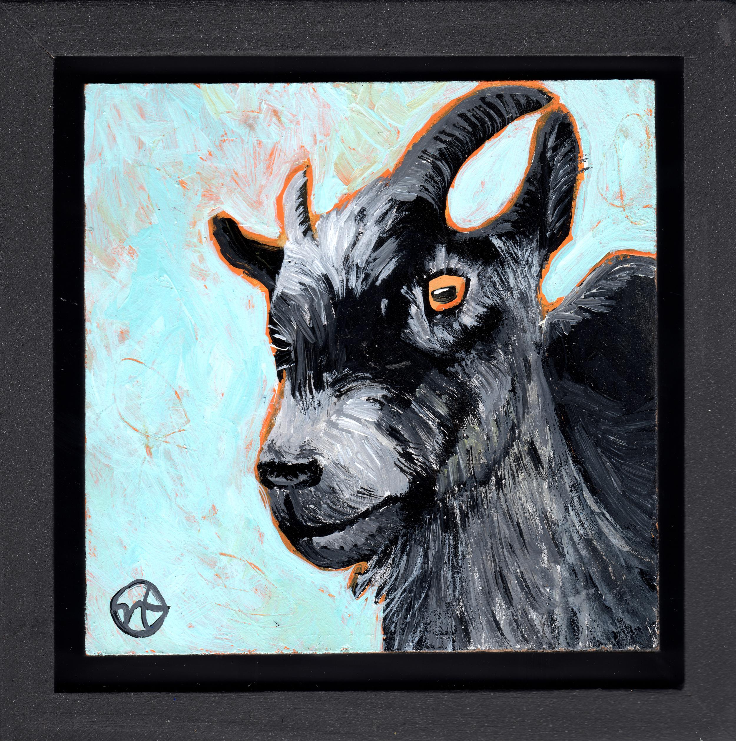 Untitled Goat