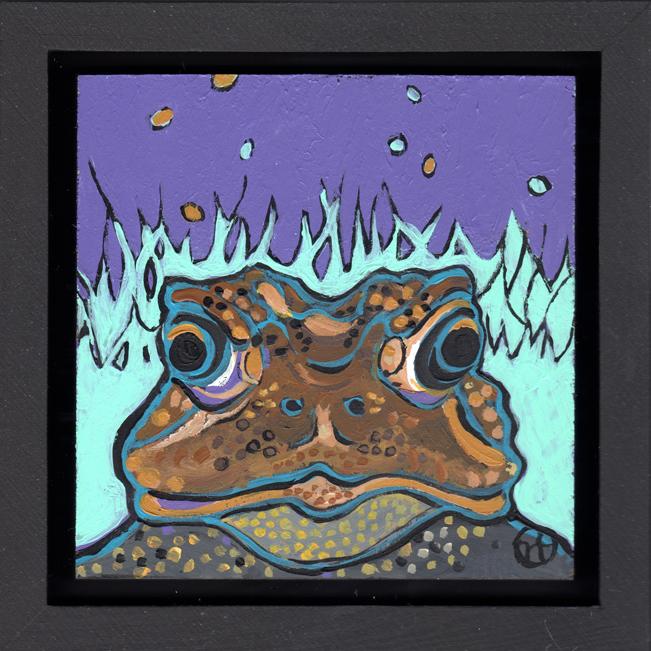 American Toad Portrait