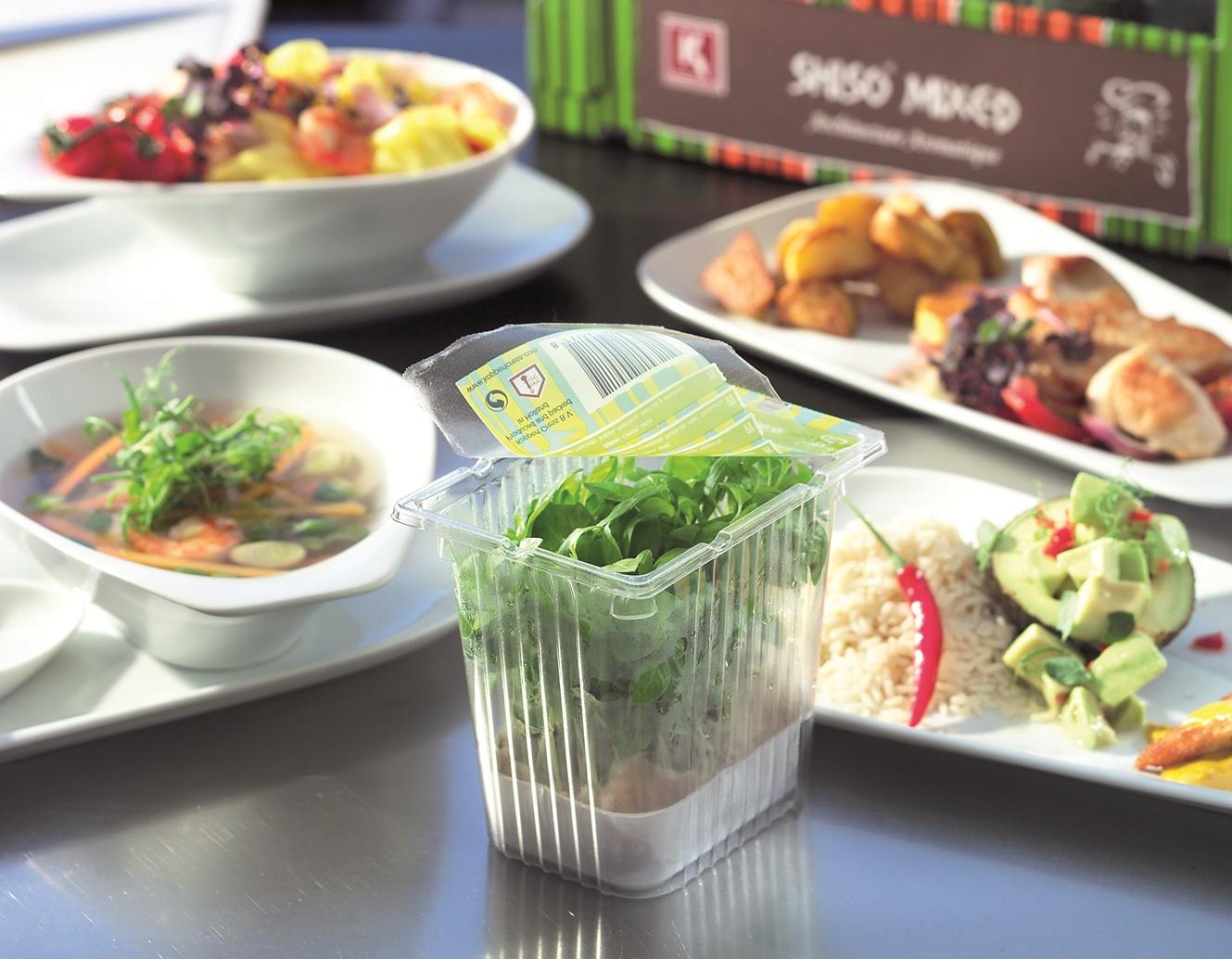 Salads, 3 copy.jpg