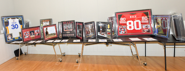 auction items_Panorama1.jpg