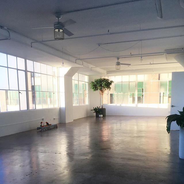 Thank you @losangeles.yogaclub for a lovely practice in a beautiful and inviting space. Can't wait to come back! ✨🙌🏻 . . #ashtanga #yoga #om #namaste #vinyasa #practiceandalliscoming #losangeles #la #downtownla