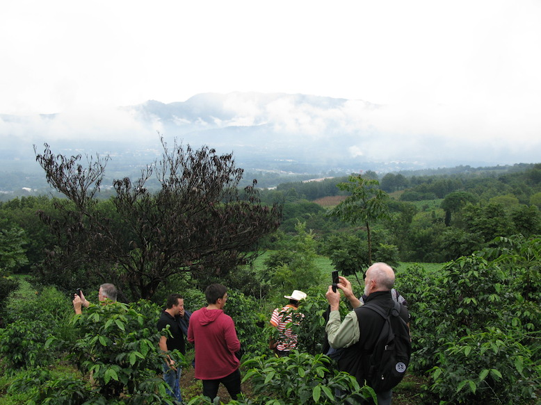 Even on a cloudy day, the view from one of Filiberto's cuerdas of land is still gorgeous.