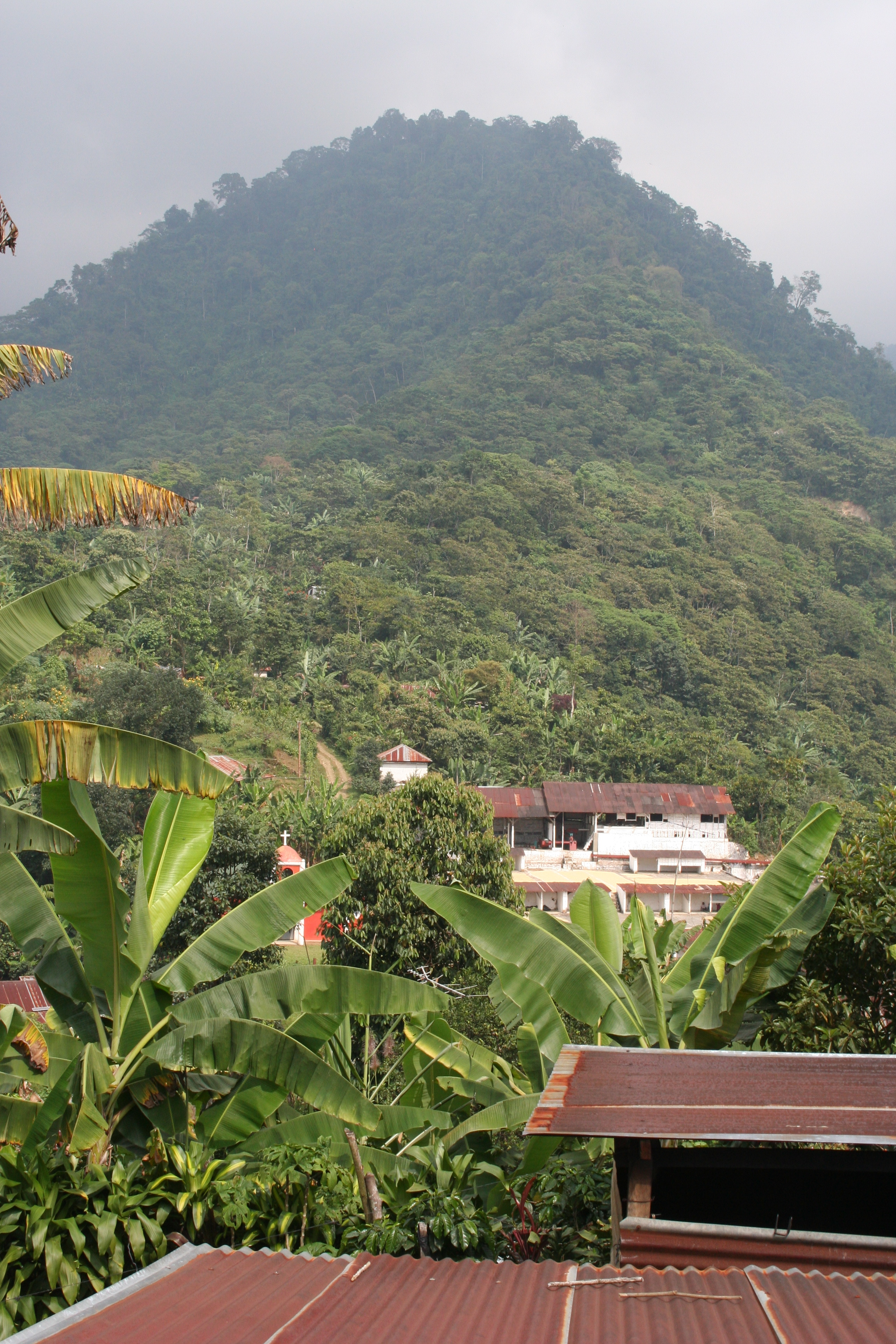 Vista 8.jpg