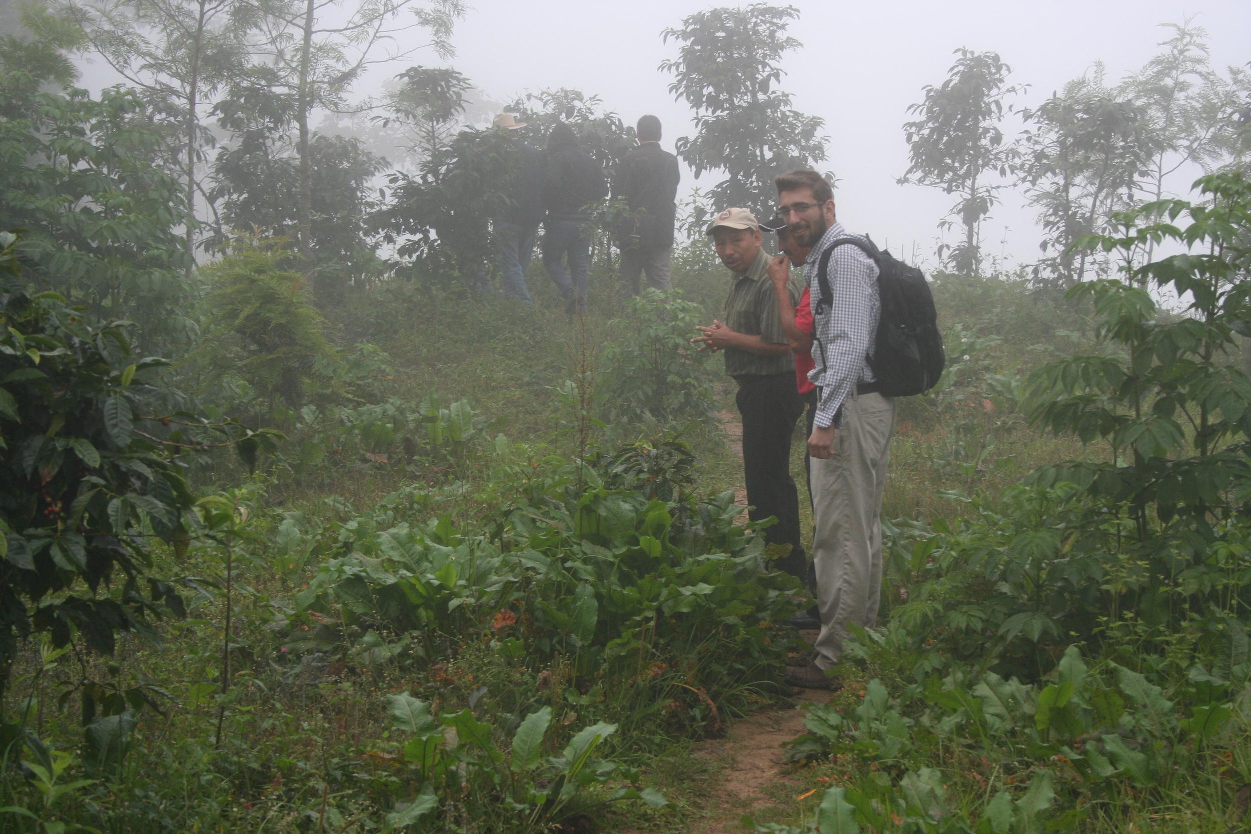 Hiking in fields 2.JPG