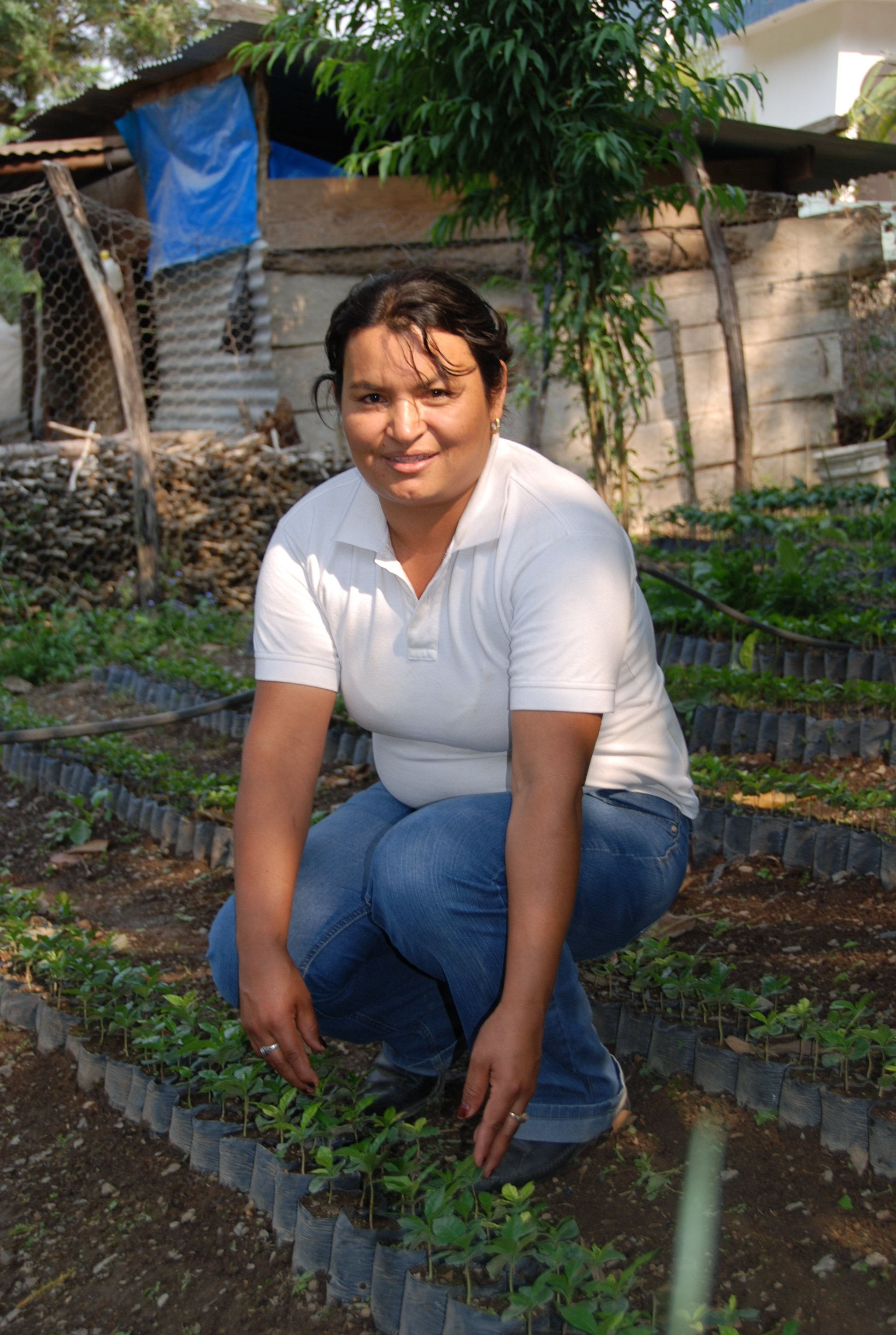 Orfa leads UPC's women's group, here she is pictured with coffee plant seedlings.