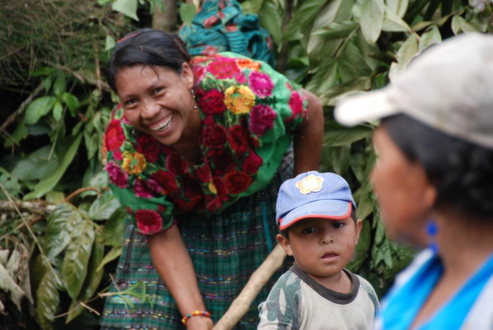 women harvesting coffee beans