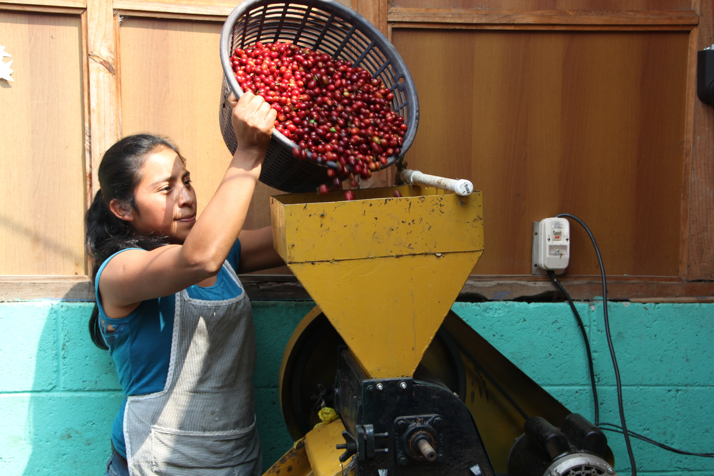 valeriana working with the coffee beans
