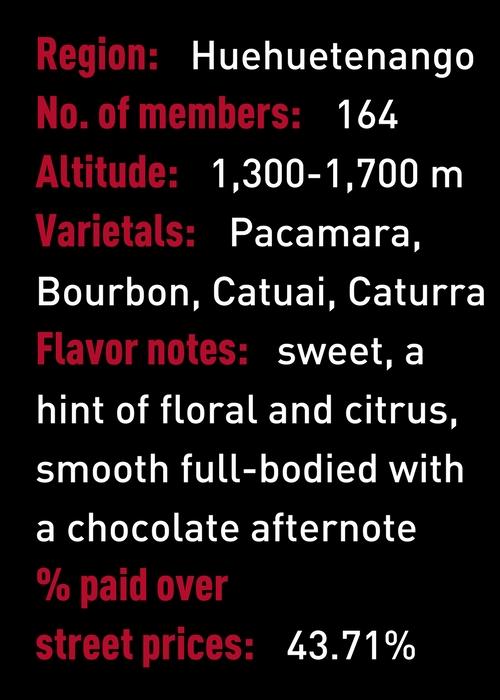 Huhuetenango Guatemala Coffee stats