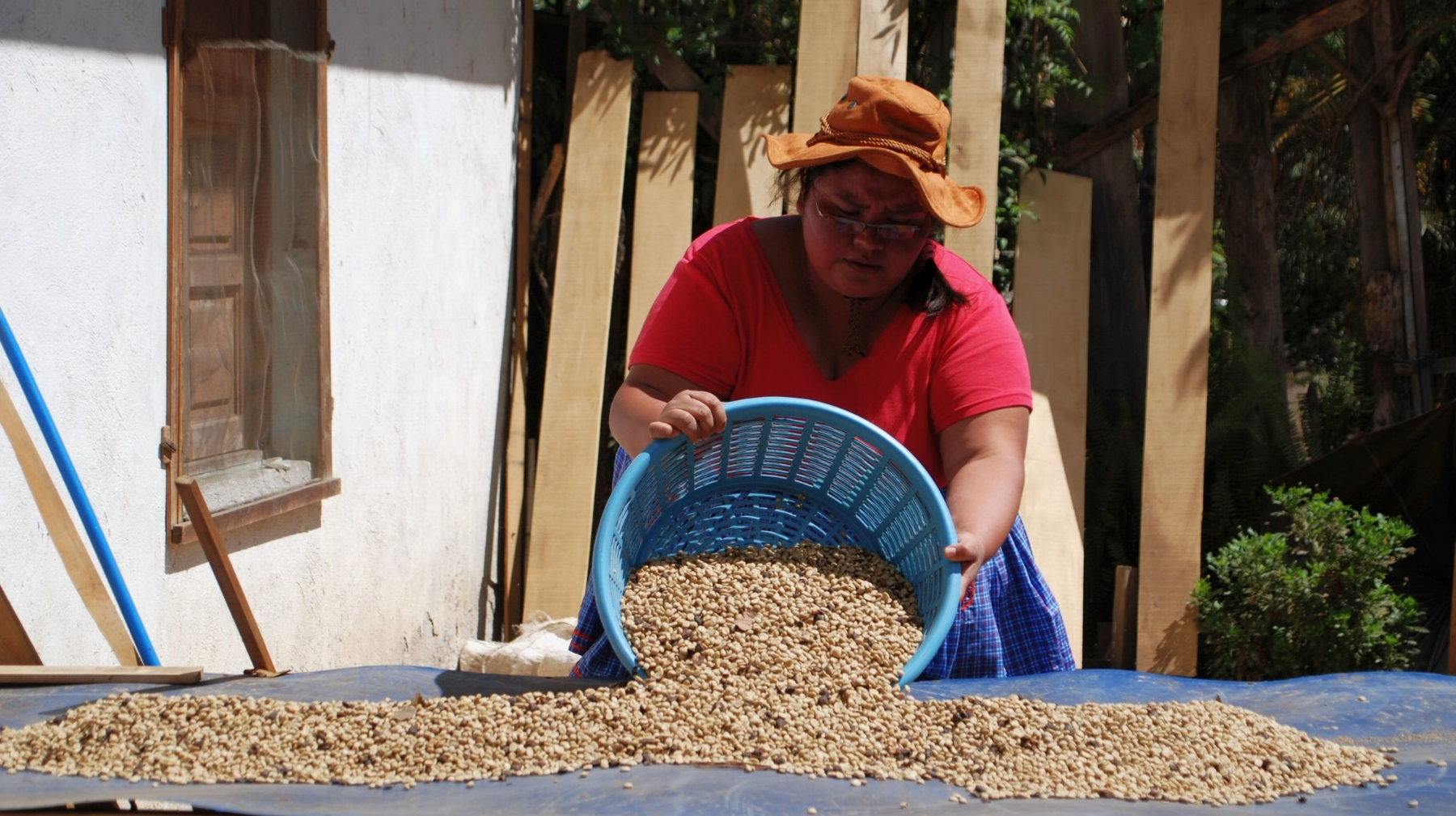 Julia - a mother, a teacher, a cook, and a coffee farmer!
