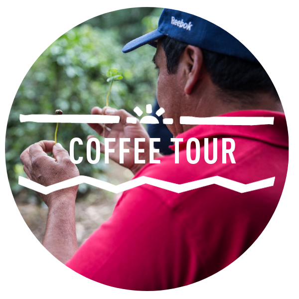 Coffee Tour.png