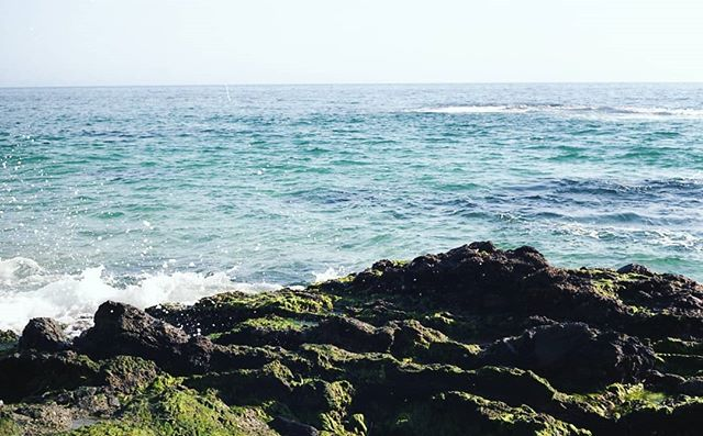 California waves hello. ⠀⠀⠀⠀⠀⠀⠀⠀⠀⠀⠀⠀ Laguna Beach, last summer. Film photo. 📸⠀⠀⠀⠀⠀⠀ •⠀⠀⠀⠀⠀⠀ •⠀⠀⠀⠀⠀⠀ ⠀⠀⠀⠀⠀⠀⠀⠀⠀⠀⠀⠀ ⠀⠀⠀⠀⠀⠀ ⠀⠀⠀⠀⠀⠀ ⠀⠀⠀⠀⠀⠀ #35mm #filmphotography #55mm #filmtravelphotography #streetphotography #wanderingnotlost #filmphoto #filmisnotdead #travelphotography #shootfilm #grainisgood #filmfeed #ishootfilm #streetphotographer #exploreeverywhere #travelphotography #californiavibes