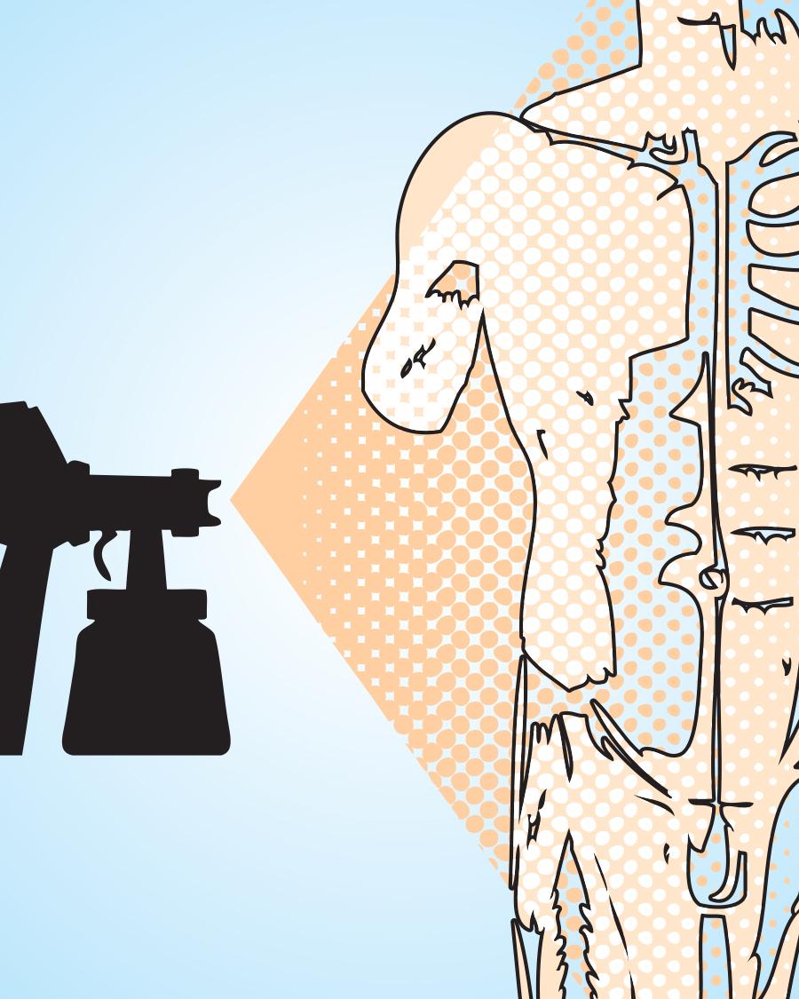 Sprays Anatomy