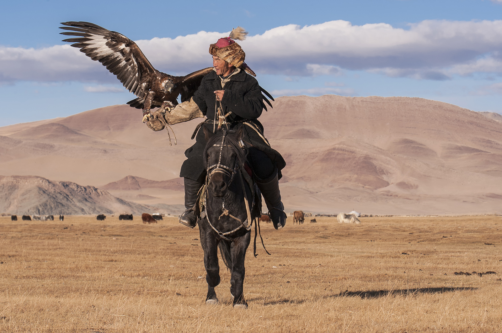 eagle hunter on horseback.jpg