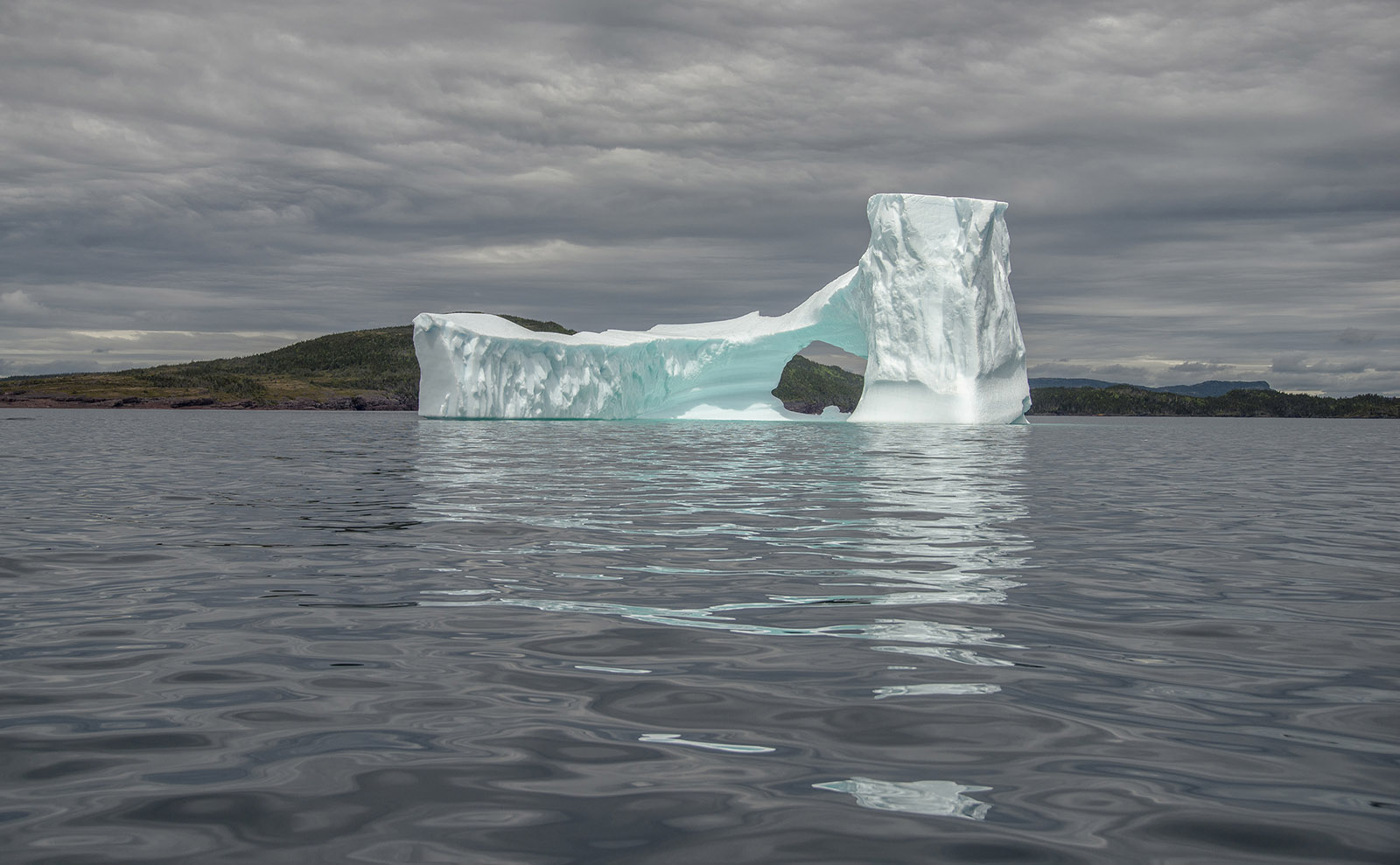 Newfoundland Iceberg 2015_sigma.jpg