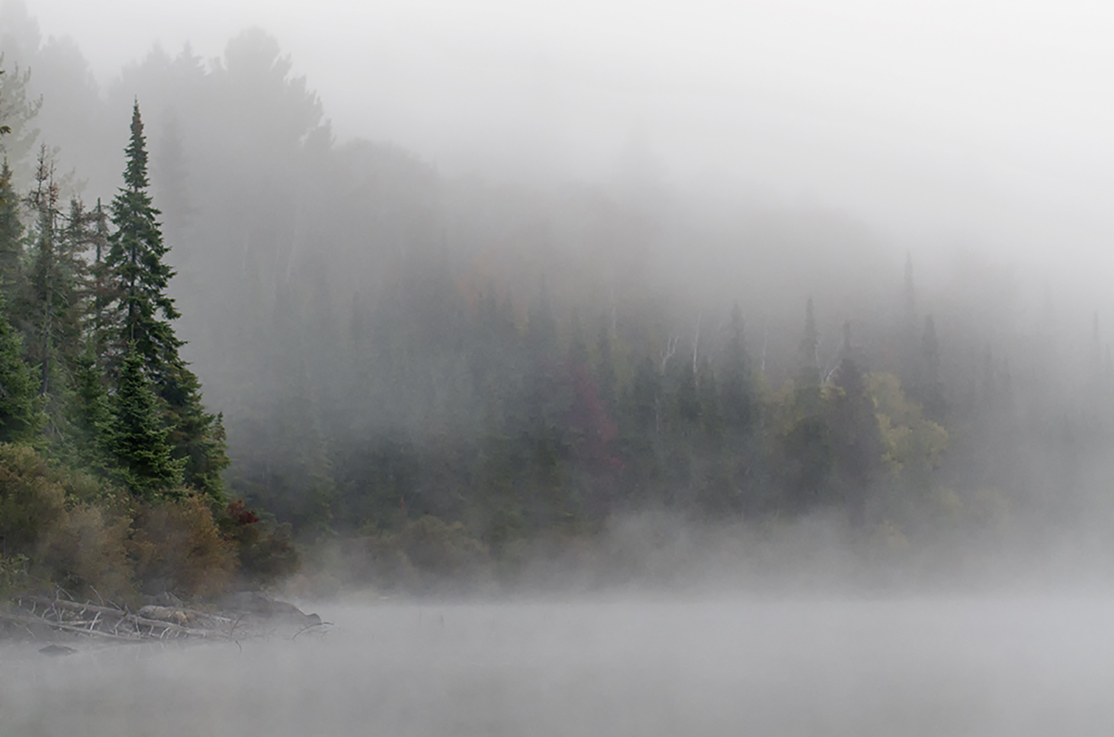 algonquin morning.jpg