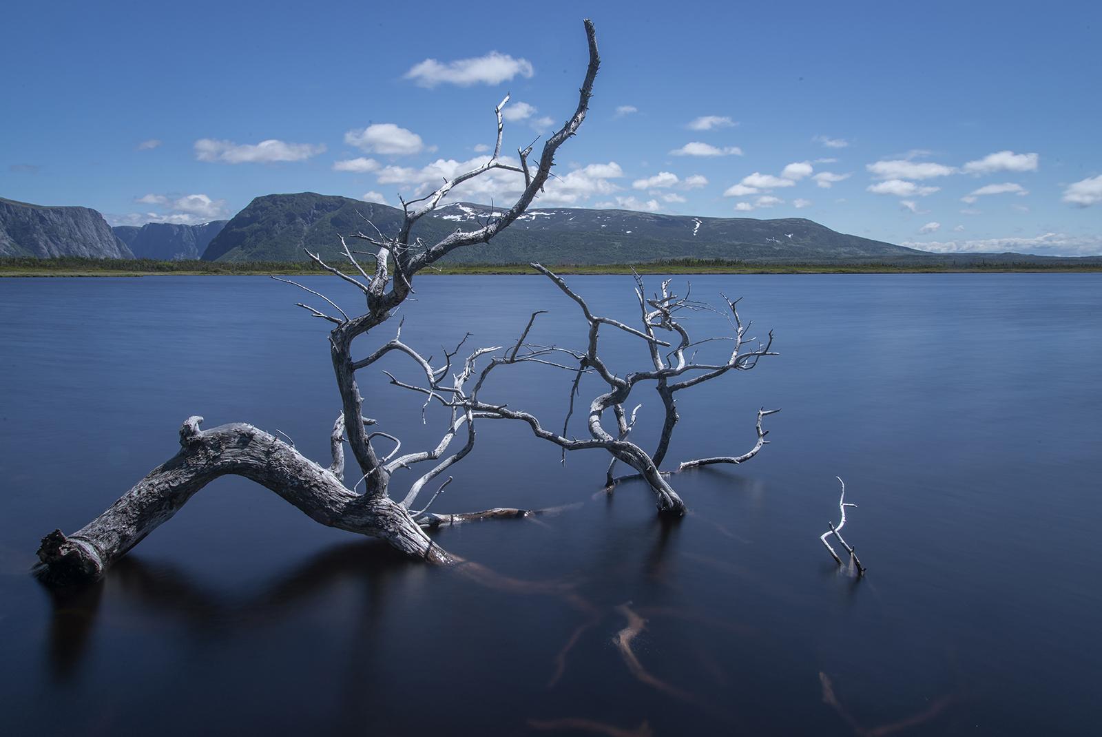 Western Brook Pond_Gros Morne web.jpg