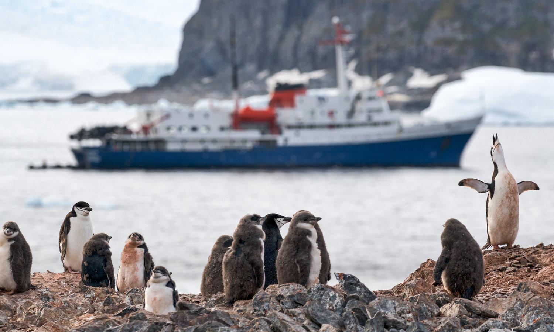 antarctica photo workshop