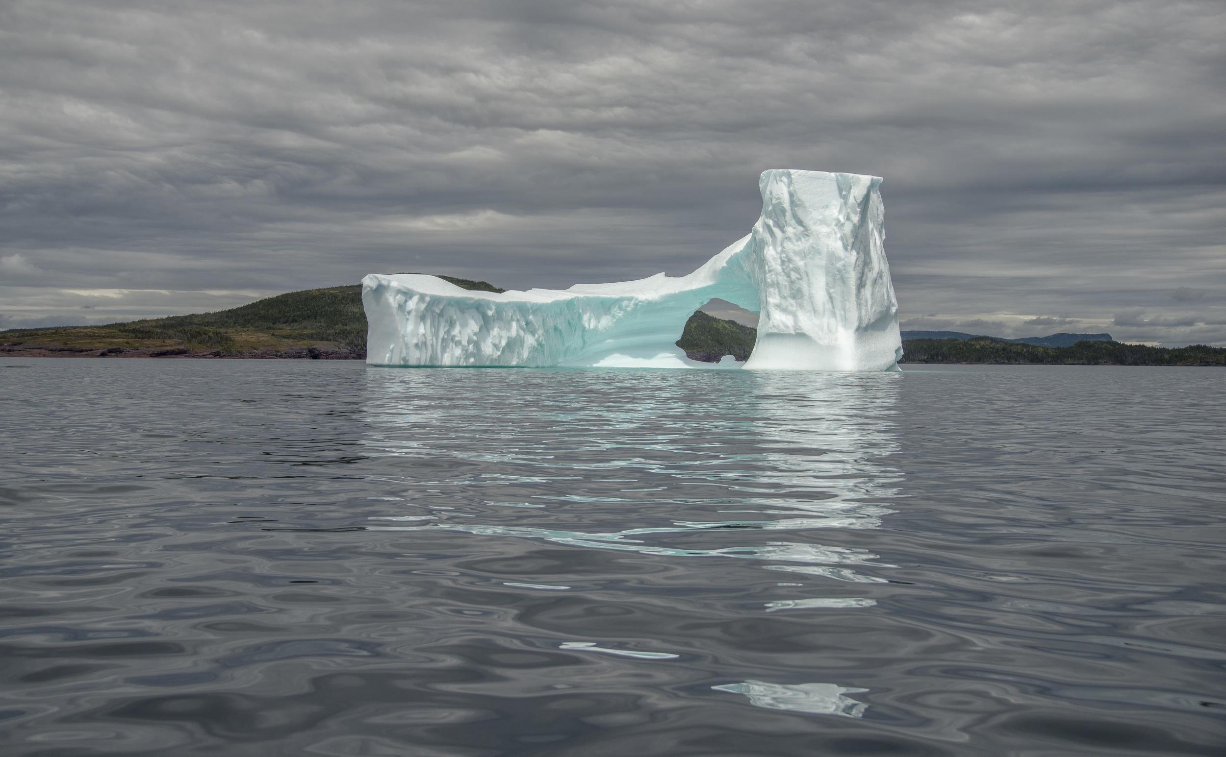 Newfoundland+Iceberg+2015.jpg