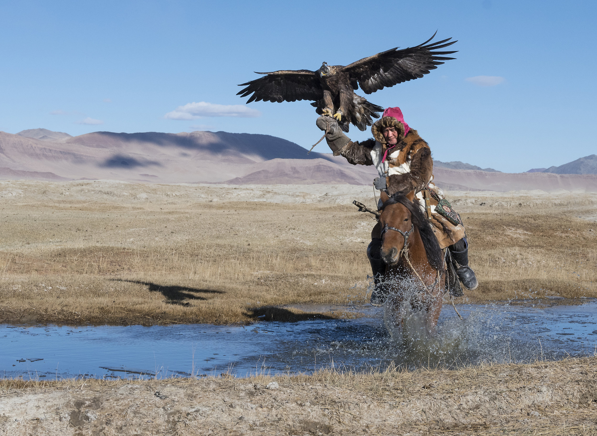An Eagle Hunter from western Mongolia with his Golden Eagle