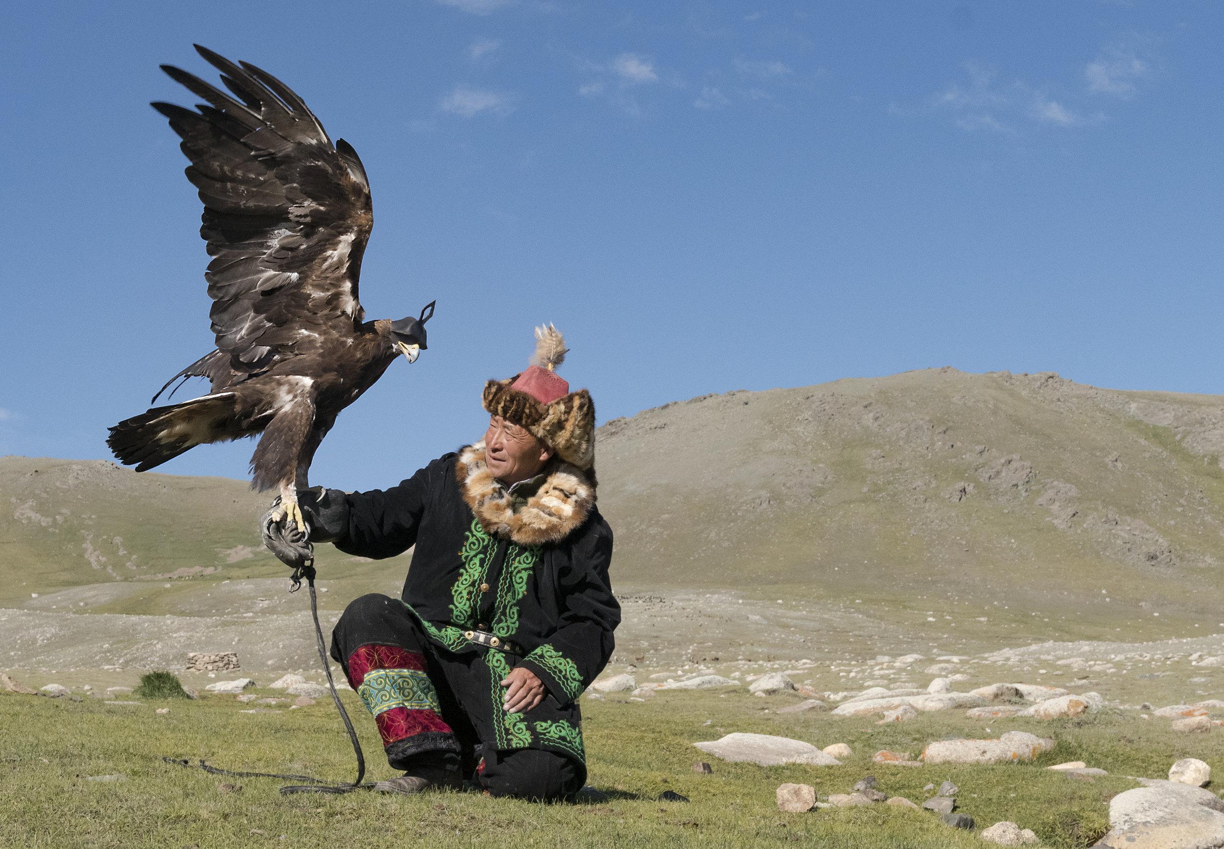 eagle hunter admires his eagle.jpg