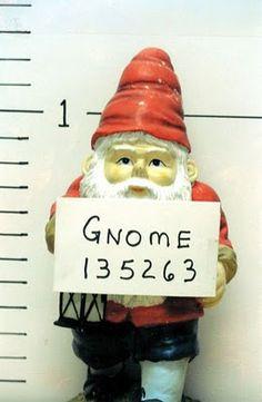 b41776e32d5786d84c7bd58c63ca89a3--funny-gnomes-garden-gnomes.jpg
