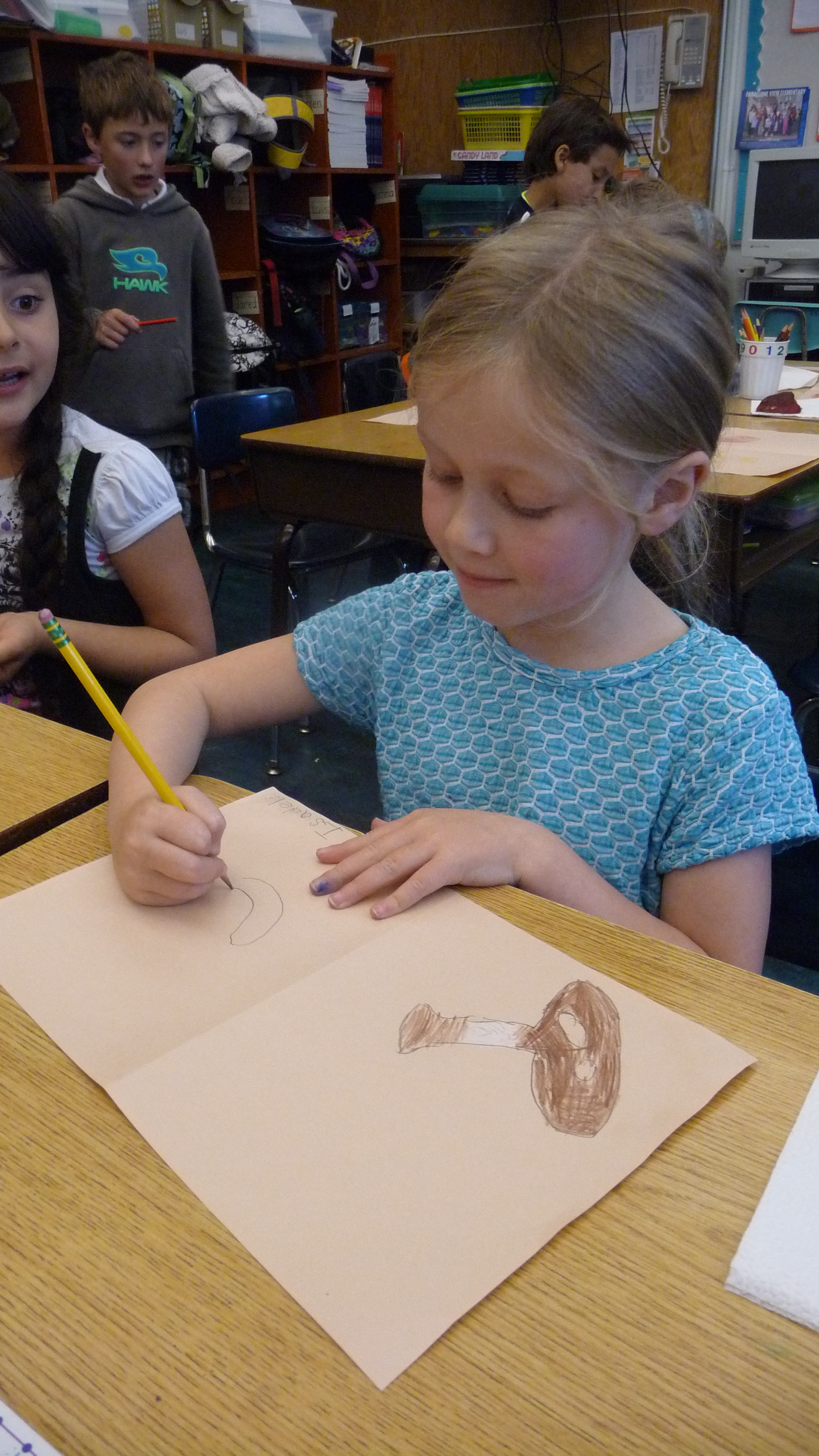 A first grade class in San Francisco draws mushrooms left over from the Bay Area Mycological Society's annual fair