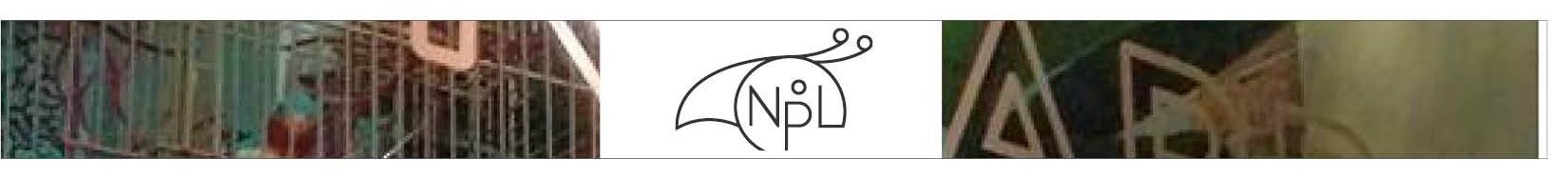 NPL banner.jpg