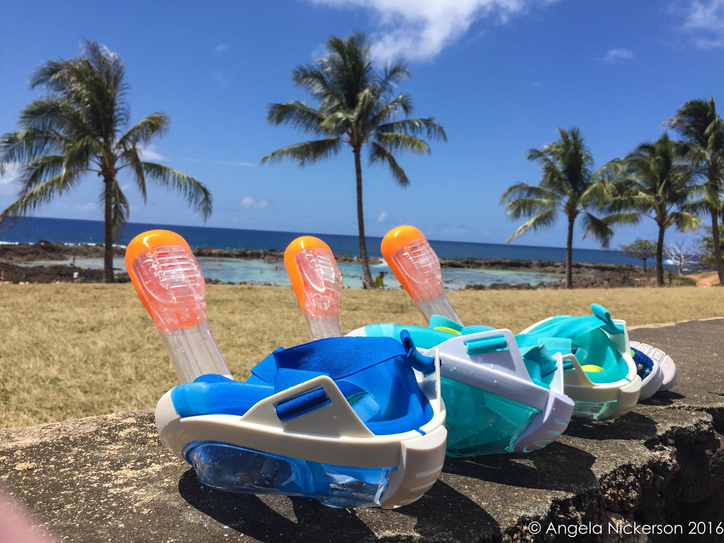 Our Tribord Easybreath Masks at Pupukea Beach Park