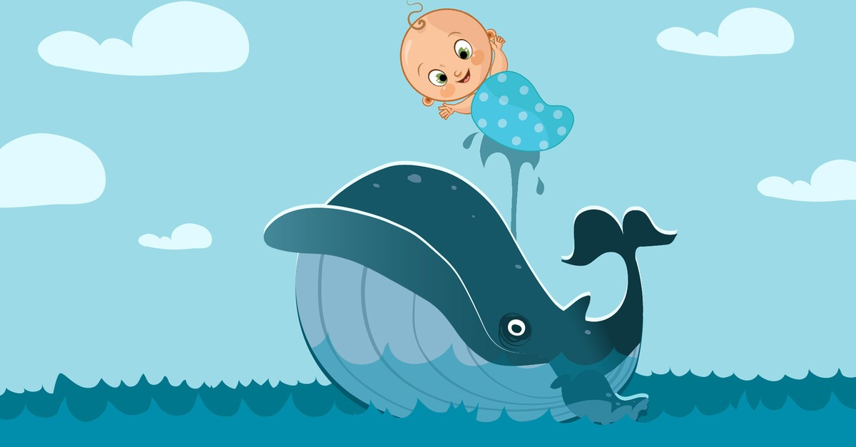 blue-whale-baby