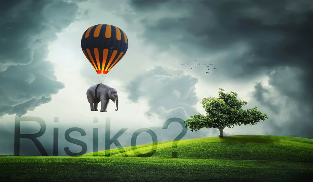 elephant-Balloon_Risiko.jpg