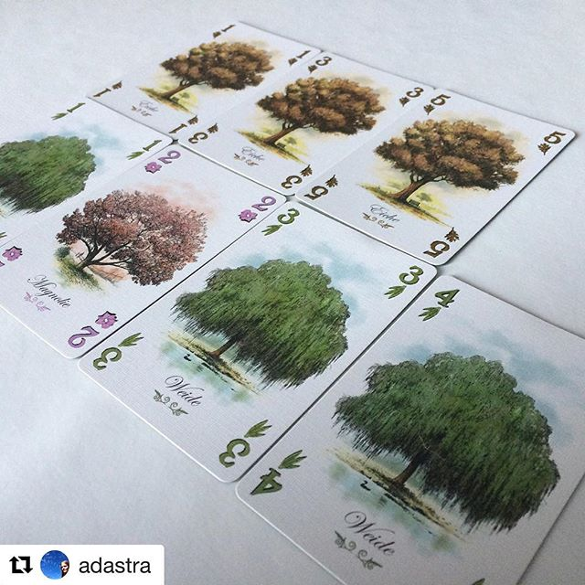 I absolutely love the art of this game. #Repost @adastra with @repostapp ・・・ Got to play Arboretum last weekend - seriously crunchy for such a small game!  #gaming #game #boardgame #boardgames #tabletop #cardgame #cardsgames #arboretum #trees #strategygame #strategy