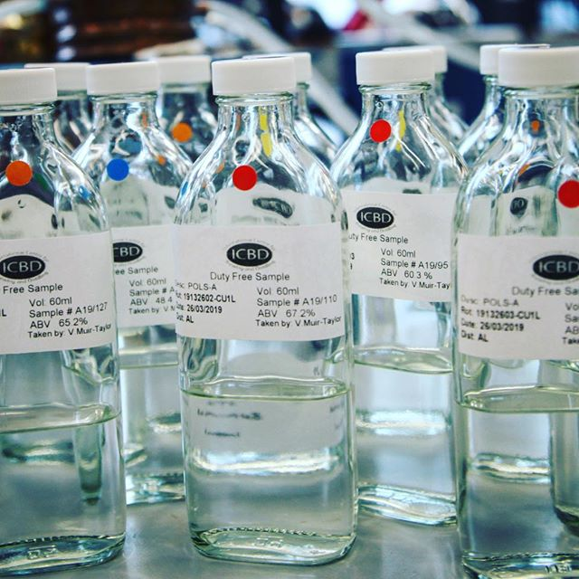 It's incredibly exciting to see Vicky's collection of newmake spirits slowly start to take shape from our research programme. Already fascinating to smell the aromatic differences between them all. Not doing any tasting just yet... #singlemalt #scotch #leithdistillery #research #distillery #scottish #scotland #whisky #brewing