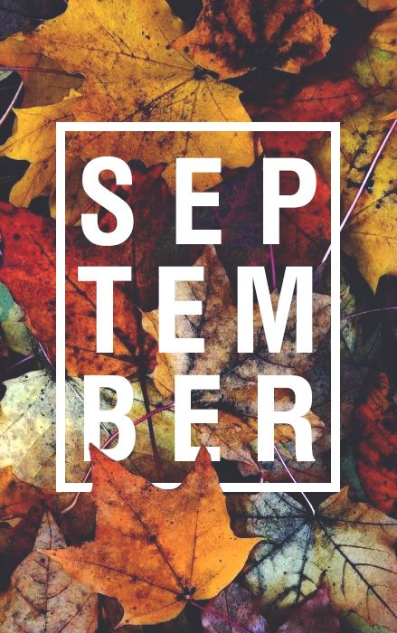 color. me. quirky. goodbye summer. hello fall