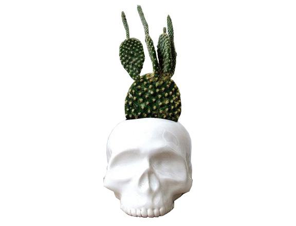 Etsy //  Ceramic Skull Planter