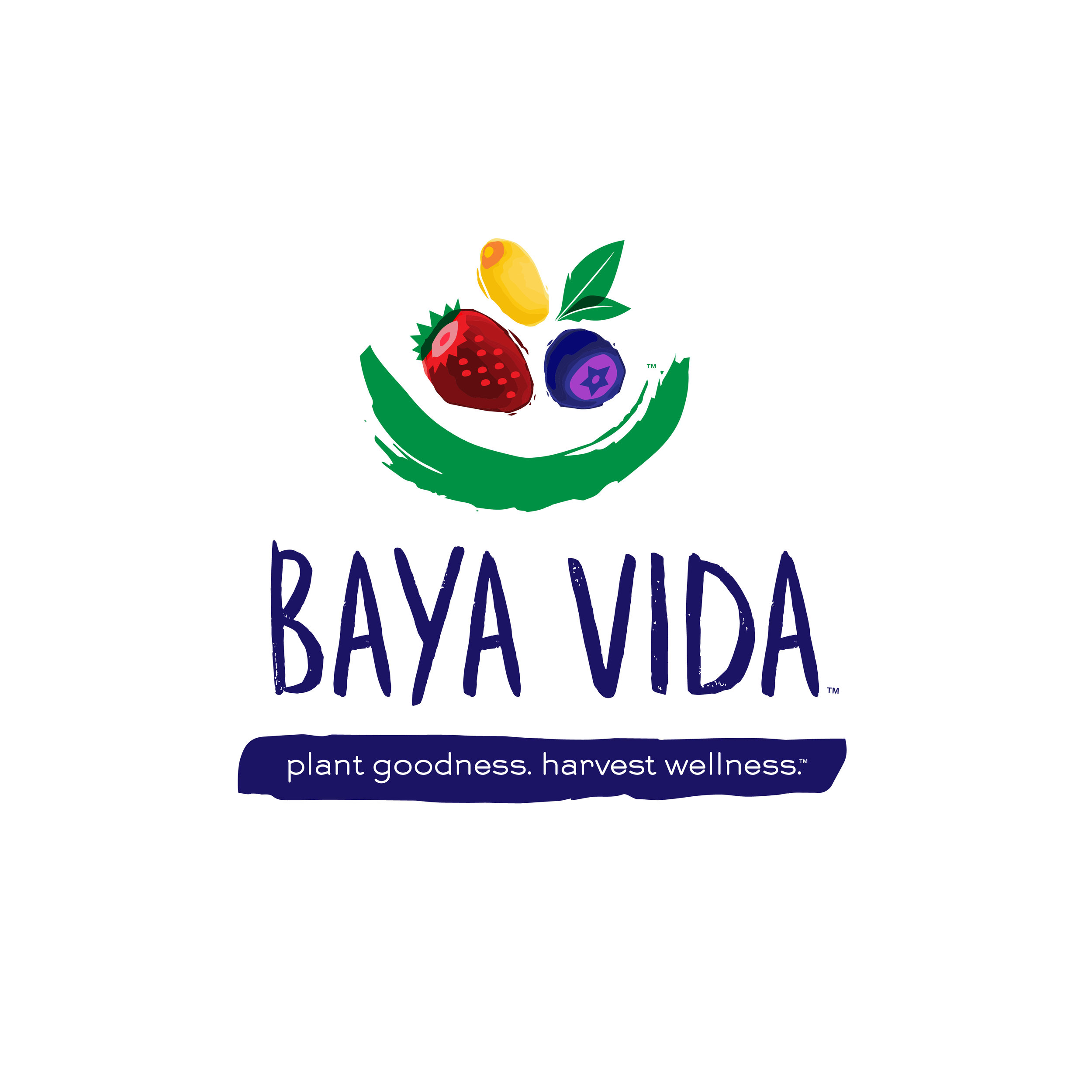 bayavida.jpg